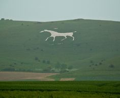 alton barnes wiltshire white chalk horse, one of the coolest things I've seen