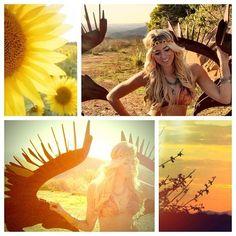 Desert sunshine….