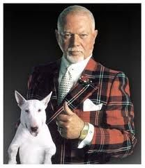 Don Cherry may have bad taste in plaid and other ugly blazers.But at least he knows that the Habs suck! Don Cherry, Hockey Logos, Hockey Players, Funny Animal Pictures, Funny Animals, Nfl Highlights, Ornette Coleman, Hockey Pictures, Famous Dogs