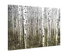 Impression sur toile ASPEN HIGHLANDS bois, multicolore - 152*101
