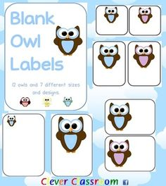 Owl Themed Blank Classroom Labels - PDF file48 pages, designed by Clever Classroom.These basic, blank owl templates can be used as labels t...$