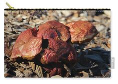 Wild Mushroom Carry-all Pouch featuring the photograph Mushroom Heart by Cynthia Guinn