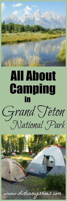Camping in Grand Teton National Park is an experience everyone should have! This site has all of the best tips for National Park vacations. Drive In Camping Sites National Park Camping, Us National Parks, Grand Teton National Park, Yellowstone National Park, Yellowstone Vacation, Solo Camping, Camping And Hiking, Camping Tips, Backpacking