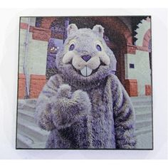 groundhog's day, groundhog day, magnet, photograph, woodstock, illinois