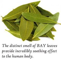 Know benefits of burning a bay leaf in your house, You will be amazed