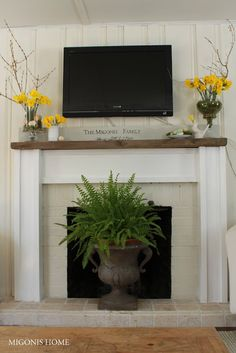 Migonis Home: Spring Mantle 2013...flowers with our accent color in the family room and a plant in front of the fireplace for spring when we don't use it!