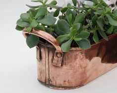 Vintage Copper Planter Jardiniere with handles - Country style decor - French antique copperware