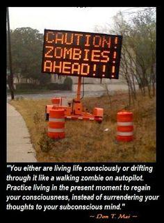 19 Best Zombie Quotes Images Zombie Quotes Zombie Apocalypse