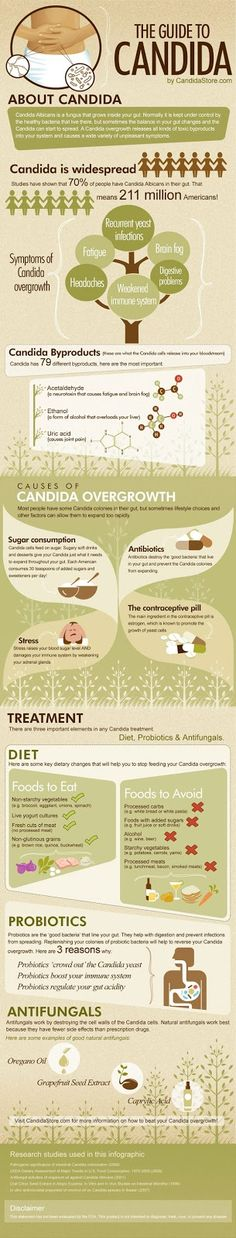 Causes, Symptoms, Natural Remedies and Treatment including herbs, extracts, diet and probiotics - A Guide to Candida [Infographic]