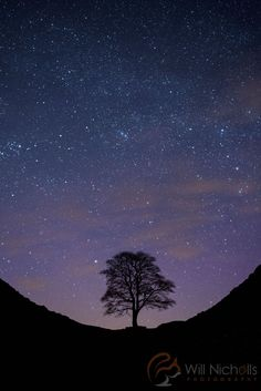 How To Photograph Stars | 7 Essential Night Photography Tips via @slrlounge #phototips #photography