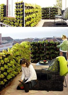 Unique 50+ Inspirations For Vertical Garden At Your House https://decorspace.net/50-inspirations-for-vertical-garden-at-your-house/