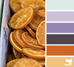 color sliced color palette from Design Seeds Colour Pallette, Colour Schemes, Color Patterns, Color Combinations, World Of Color, Color Of Life, Pantone, Color Harmony, Color Balance