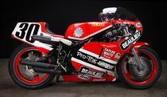 Yamaha TZ750 1 740x432 Dale Singletons Yamaha TZ750