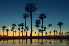 Mission Beach, San Diego, California- I lived there in the early first time seeing palm trees. Ways To Travel, Places To Travel, Travel Tips, Travel Ideas, Mission Beach San Diego, Mission Bay, California Dreamin', Oh The Places You'll Go, Vacation Spots