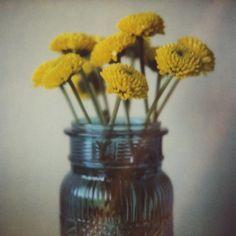 flowers in a jar Polaroid print via CoriKindred on etsy