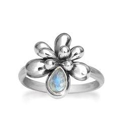 Rabinovich ring