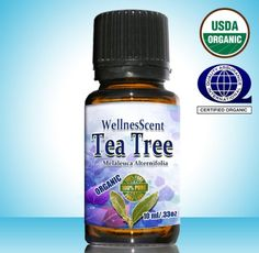 Organic TEA Tree Essential Oil 100% Natural Pure  Undiluted Premium Therapeutic Grade &Essential Oils Used in Aromatherapy to Provide Relief From Cough, Colds & Chest Congestio ; Natures Antibiotic & Treat Acne, Bacterial Inflammation, Scars, Fungus, Coldsores, Nail Fungus ; Treatment for Lice, Dandruff & Hair Loss Antibacterial, Antimicrobial, Antiviral & Antifungal Function ; Relief From Insect Sting or Bites NON Toxic Bug Spray, Insect Repellent, Household Cleaner &Toothpaste Dental/oral…