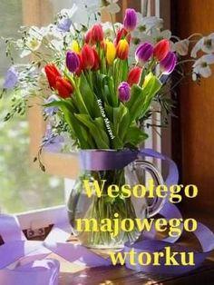 Good Morning, Humor, Tuesday, Buen Dia, Bonjour, Humour, Funny Photos, Funny Humor, Comedy