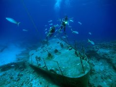 Divers and fish hover over the remains of a ship that broke up on one of the many shallow reefs around the Cayman Islands, West Indies.