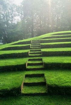 Organic Gardening Supplies Needed For Newbies Nothing Is More Pleasant To The Eye Than Green Grass Kept Finely Shorn - Francis Bacon Modern Landscape Design, Modern Landscaping, Landscape Architecture, Garden Landscaping, Landscape Steps, Sloped Garden, Garden Pool, Garden Paths, Garden Stairs