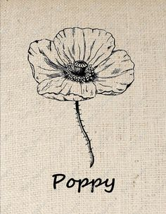 Poppy Flower Iron on Transfer Digital Download by PetitePaperie
