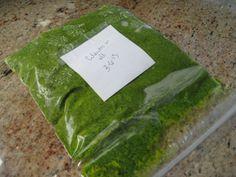 frozen cilantro and oil paste