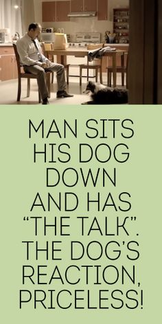 "Man Sits His Dog Down And Has ""The Talk"". The Dogs Reaction Priceless!"