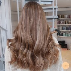 Nice brown hair application in this hair texture Beige Blonde Hair, Brown Hair Balayage, Brown Hair With Highlights, Dark Blonde, Brunette Hair, Brown Hair Color Shades, Brown Hair Colors, Beige Hair Color, Non Blondes