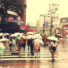 Rainy day in Harajuku today