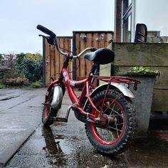 Vandaag is het alweer vrijdag en buiten is het echt rot weer. Gisteren voorspelden ze nog dat het hier in het noorden wel eens zou kunnen gaan sneeuwen maar daar is zo blijkt #vanochtend niks van terecht gekomen. Als er wel sneeuw had gelegen had @florianbos.eu even voor het eerst door de sneeuw willen fietsen op zn #fiets Dat leek hem namelijk leuk zei die. Daar komt dus niks van terecht. wat we vandaag gaan doen weet ik niet want zoals het nu dus lijkt blijft het echt de hele dag regenen en