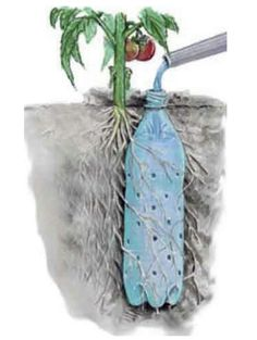 Use soda pop or water bottles with holes to water plants individually. Saves water and gets the water where you need it.
