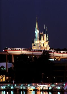 "250,000 Guests at the Walt Disney World Resort ride the various forms of ""mass transit"" every day, which include monorails, ferryboats, bus services and water taxis."