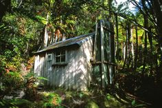 Quintissential pioneer's hut, Ross, Westland, NZ Wood Stove Cooking, Kitchen Stove, West Coast, Home Kitchens, Tiny House, Farmhouse, Stoves, Landscape, House Styles