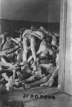 Dachau, Germany, A pile of corpses, after the liberation. - Yad Vashem Photo Archive