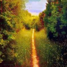 path to the civilization by ildiko-neer on DeviantArt
