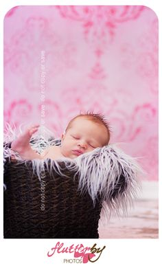 My Daughter Lilliana. Photo by Flutterby Photos.
