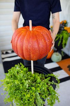 3 Ways to Put Outdoor Planters to Good Use This Halloween Halloween Porch Decor Ideas Using an Outdoor Planter Front Porch Planters, Outdoor Planters, Fall Planters, Front Porches, Pumpkin Planter, Pumpkin Topiary, Fall Topiaries, Porch Decorating, Summer Decorating