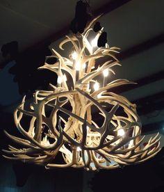 Fifteen Light Elk Antler Chandelier | eBay