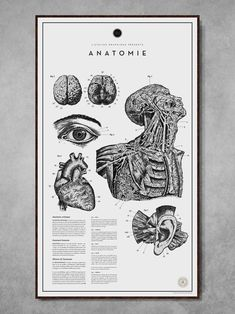 https://ateliergraphique.tictail.com/product/anatomie-no2