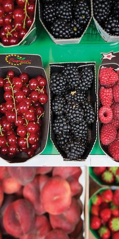 Fresh berries from the markets - by Lauren Bath