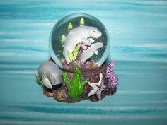 a manatee and a snow globe---lea would flip!