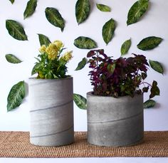 We needed some large scale, impressive planters for our new office space ... so we decided to make our own out of concrete! You can't buy these at the big box hardware store, but you can make them yourself in a weekend. #Curbly-Original, #sponsored, #featured
