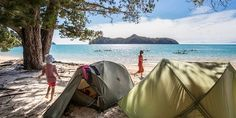 Abel Tasman National Park, South Island, New Zealand. Photo / Getty Images
