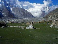 Batura Glacier Home of Yaks Pakistan