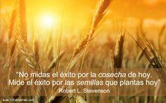 A tener muy en cuenta ;) :  No es tan importante la cosecha que hoy recogemos como las semillas que hoy plantamos...  Feliz y buena siembra pues y... feliz fin de semana!.   Besoooos!