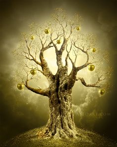 Creating a golden apple tree with Photoshop