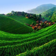 Longji Rice Terrace, China Stunningly beautiful terraced rice fields.