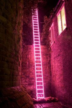 'Eschelle', neon ladder by Ron Haselden, Lumiere Durham Photo by Matthew Andrews. The neon and the background Instalation Art, Neon Aesthetic, Alien Aesthetic, Pink Walls, Neon Lighting, Picture Wall, Picture Prompt, Wall Collage, Les Oeuvres