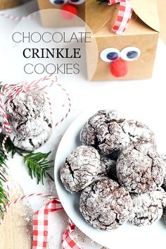 Chocolate Crinkle Cookies- Placeofmytaste.com