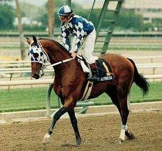 Kentucky Derby and Preakness Stakes Winner 1987  Alysheba